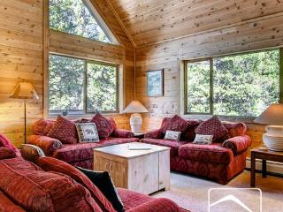 Beautiful Blue River Mountain Magic Retreat 352 (MMR352) - Breckenridge vacation rentals