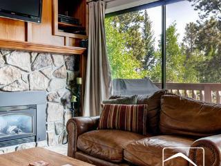 Lance's West 13 Loft (LW13loft) - Summit County Colorado vacation rentals
