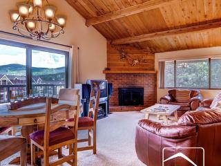 Mountain Wood 406 (MW406) - Breckenridge vacation rentals