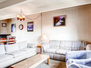 Ski & Racquet Club BP2 (SRBP2) - Breckenridge vacation rentals