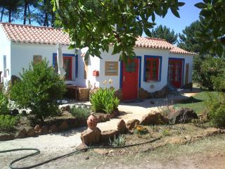 Casa do Henrique, Casa do Campo - Sao Teotonio vacation rentals