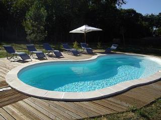 la longère en périgord avec sa piscine chauffée - Mussidan vacation rentals