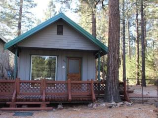Mountain Hideaway - Big Bear Lake vacation rentals