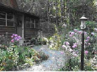 Woodhaven Cabin - Mena vacation rentals