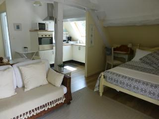 Nice Condo with Internet Access and Cleaning Service - Faverolles-sur-Cher vacation rentals