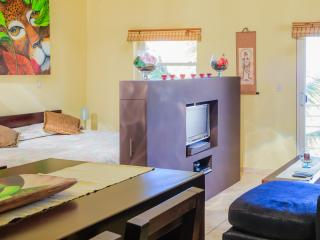 OCEAN DREAM Clean Fresh Organic studio w/balcony - Cabarete vacation rentals