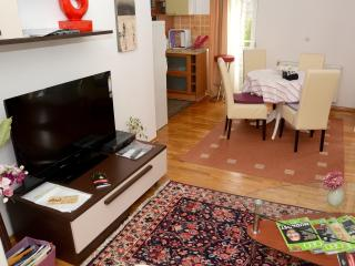 Superior 2 Bedroom Apartment, 4 Persons - Zagreb vacation rentals