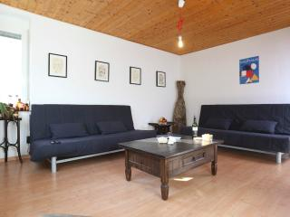 Böblingerstr big apartment with garden & parking - Stuttgart vacation rentals