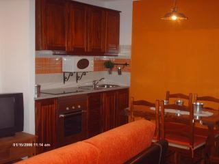 casa da aldeia - Minas de Sao Domingos vacation rentals