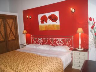 Cozy 3 bedroom Vacation Rental in Minas de Sao Domingos - Minas de Sao Domingos vacation rentals