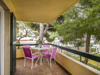 CURRO - 0537 - Puerto de Alcudia vacation rentals