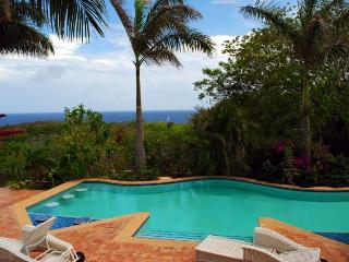 Roatan's Newest Luxury Estate - Promo! - First Bight vacation rentals