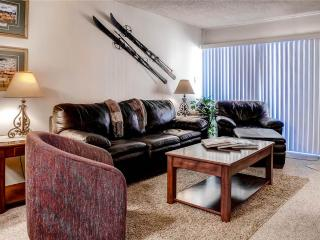 Ski Inn 232 - Steamboat Springs vacation rentals