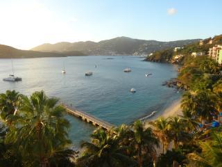 Saint-Thomas, US Virgin Islands - Charlotte Amalie vacation rentals