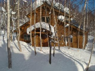 Harmony House - Niseko-cho vacation rentals