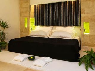 9 bedroom Villa with Washing Machine in Surano - Surano vacation rentals