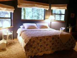 Enjoy this Dorrington Mountain Cabin!  Everything you need, a perfect escape! - Dorrington vacation rentals