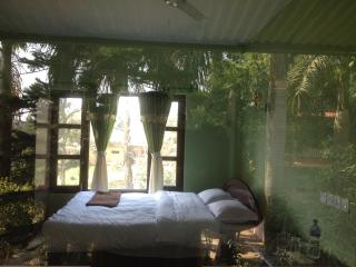 17 bedroom Guest house with Internet Access in Sauraha - Sauraha vacation rentals