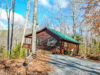 PEAK-A-VIEW- 2 BEDROOM, 1 BATH CABIN WITH A BEAUTIFUL MOUNTAIN VIEW, HOT TUB, WIFI, PET FRIENDLY, FIRE PIT, GAS GRILL, PAVED ACC - Blue Ridge vacation rentals