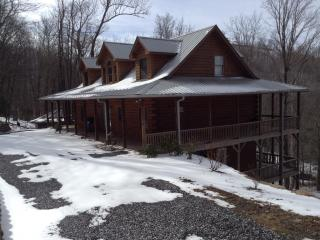 LOG CABIN AT SKI RESORT. .5 MILE TO LIFT SNOW,SNOW - Burnsville vacation rentals
