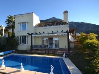 Contemporary private 3 bedroom villa - Istan vacation rentals