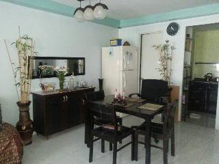 Affordable but Comfortable place to stay - Clark Freeport Zone vacation rentals