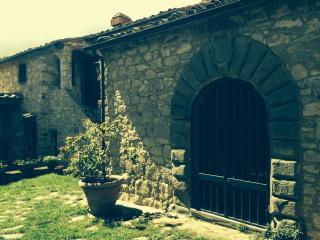 Casa vacanze nel cuore del Chianti - Radda in Chianti vacation rentals