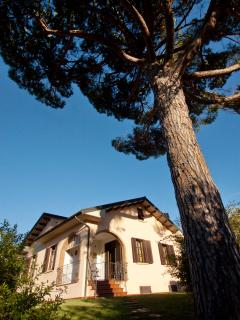 Nice House with Internet Access and Dishwasher - Montescudaio vacation rentals