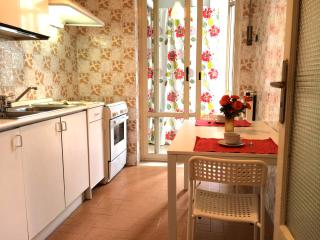 Cozy Apartment with Wireless Internet and Television - Naples vacation rentals