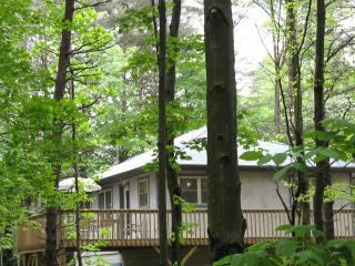 Honey Ridge Cabins~ a quality experience! - Hocking Hills vacation rentals