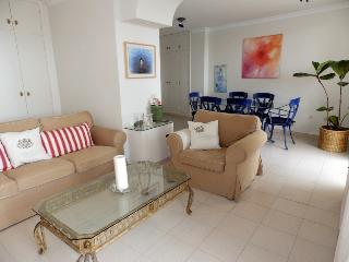 Large & luminous 3 bedroom Penthouse in el Medano - El Medano vacation rentals