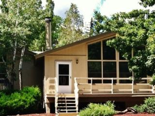 Mountain Getaway, WIFI & Satellite, in Town - Flagstaff vacation rentals