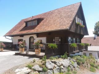 Knappenhof Eichberg - Lannacher-Haus - Leutschach vacation rentals
