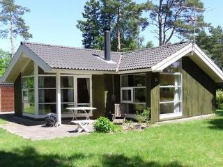 Bjerge Strand ~ RA15302 - West Zealand vacation rentals