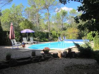 Arc-en-Provence  The Lavender Apartment - Lorgues vacation rentals