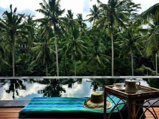 Magnificent rice field view Villa - Ubud vacation rentals