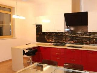 LUX Premium University Apartment - Moscow vacation rentals
