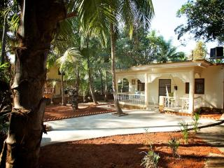 NEW 3 Bedroom AC House near Palolem beach, Goa - Patnem vacation rentals