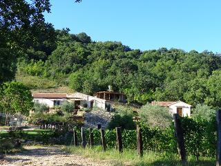 AGRITURISMO FONTENUOVA - LA QUERCIA - Saturnia vacation rentals