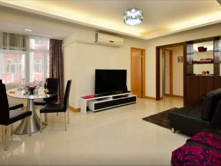 FashionHome in CausewayBay - 3Bed 2Bath - Hong Kong vacation rentals