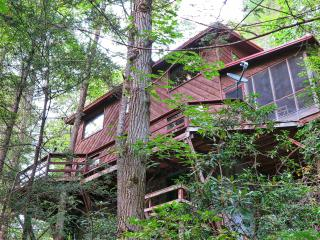 Pigeon River Hideaway-on the LITTLE PIGEON RIVER g - Gatlinburg vacation rentals