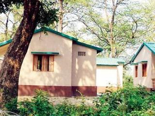 Bright 12 bedroom Villa in Valmiki National Park - Valmiki National Park vacation rentals