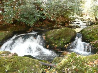 Rushing Waters Cabin-Romantic Waterfall Cabin - Gatlinburg vacation rentals