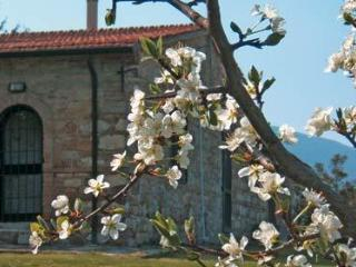 Agriturismo Spazzavento  Mandorlo - Le Piazze vacation rentals