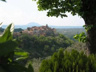 Charming old-style apartment in medieval village - Montelibretti vacation rentals