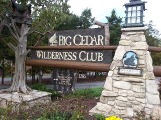 Wilderness Club at Big Cedar - Table Rock Lake vacation rentals
