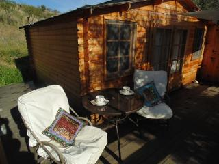 Beautiful Private Cabin with Lay-Z-Spa Tub with LED lights - Monda vacation rentals