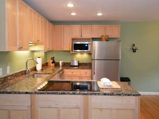 Silverglo Codominiums Unit 307 - Aspen vacation rentals