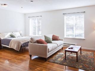 Drop Dead Gorgeous Spacious Studio - Boston vacation rentals