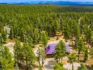 Duck Creek Mt. Cabin sleeps 12 - Southwestern Utah vacation rentals